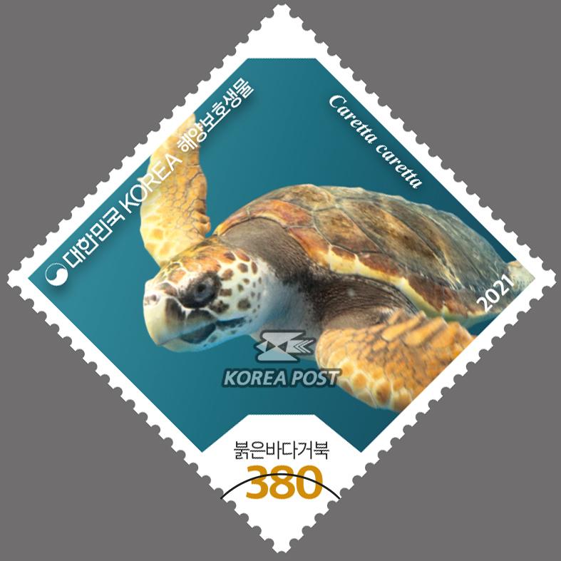 붉은바다거북 - 해양보호생물 우표사진
