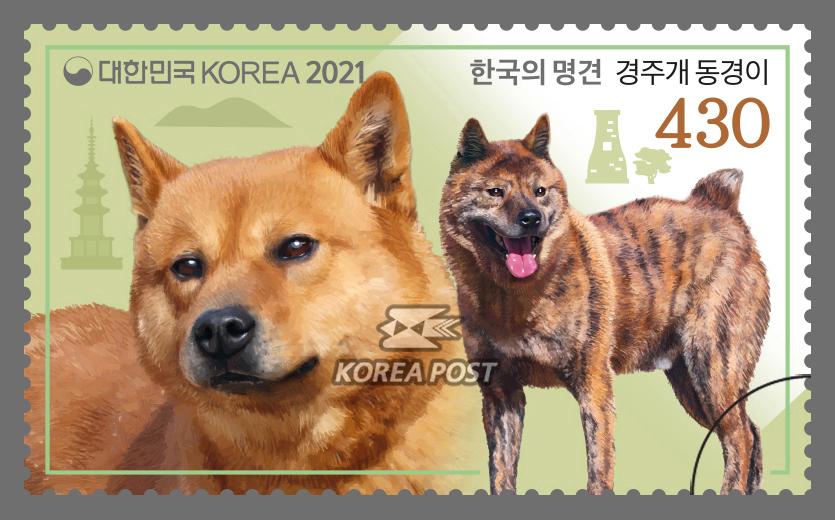 한국의 명견