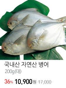 국내산 자연산 병어