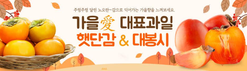햇단감&대봉시(7/15)