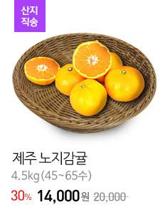 [산지직송]제주 노지감귤