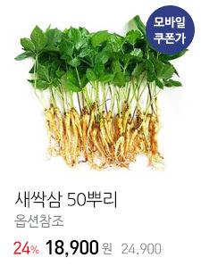 [GAP인증 ]품격 있는 새싹삼 50뿌리 고급 명절 선물세트