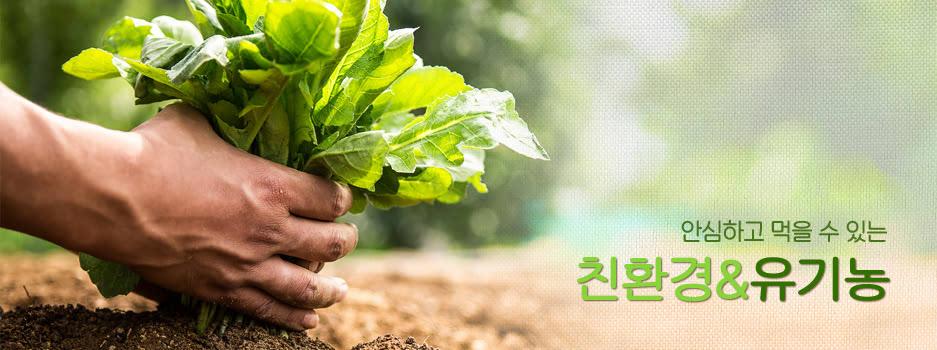 안심하고 먹을 수 있는 친환경&유기농