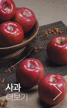 사과 더보기>