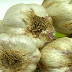 [우리농산] 의성 토종마늘 한접 중대(3.5k내외) 상품이미지