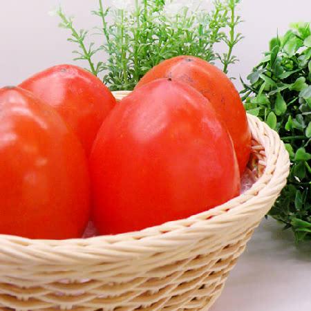 [과일명가] 맛있는 대봉감 특과 5kg(11~13과)