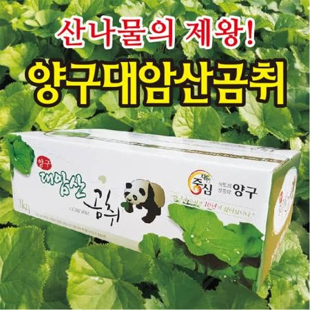양구대암산곰취(무농약)