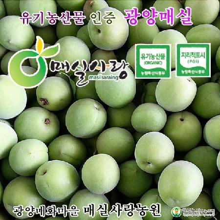 유기농인증 광양매화마을 청(홍)매실상(上)10kg(엑기스용)