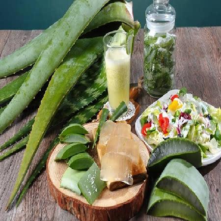 [남도장터]유기농인증!!! 웰빙알로에 산지직송 알로에생잎 3kg