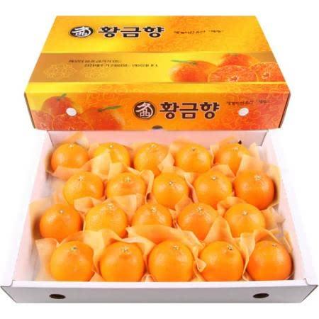제주 황금향(특대) 5kg(19~23과)