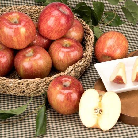봉화 배몽룡山사과