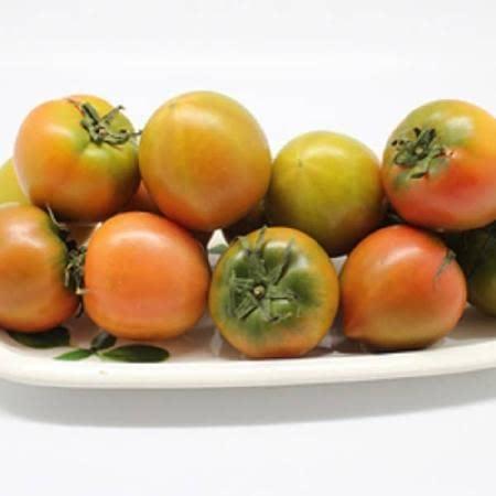 [과일명가] 맛있는 대저 짭잘이 토마토 2.5kg 중과(3~4번과) 최상급