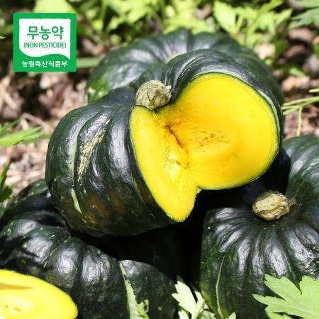 [생산자직송] 함평 정대성님의 무농약 햇 미니단호박 2kg/4kg