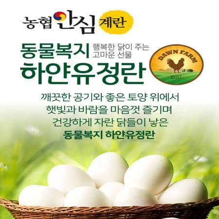 상하새벽농장 농협안심계란 동물복지 하얀유정란 40개입