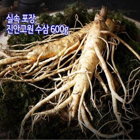 진안고원 실속형 수삼 5년근 600g(11-13뿌리)