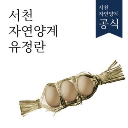 [서천] 케이지프리! 자연양계유정란