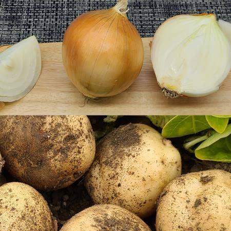 햇 감자 2kg(특)와 햇 양파 2kg(개당 150g이상)