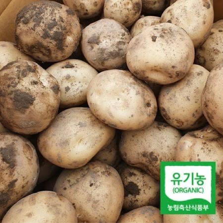 [친환경] 갓 수확 햇감자 유기농 무농약 친환경 수미감자 포슬포슬(대)