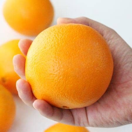 [선우네] 달콤한 과즙 가득찬 네이블 고당도 오렌지 3kg(중과)