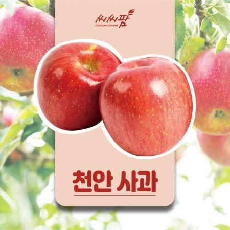 [천안] 천안 사과 선물세트