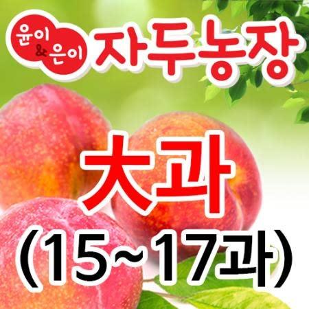 의성자두(추희)1.8kg [15~17과]대