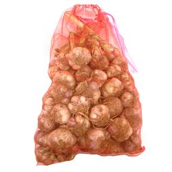 [우리농산] 양념(흑마늘용) 마늘 특대품 5kg (110~140통)