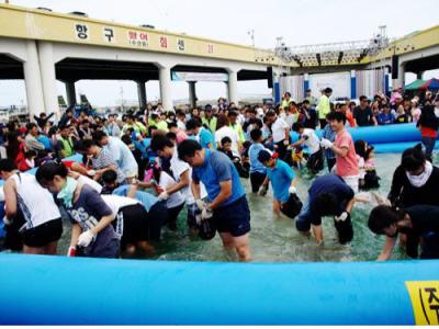 주문진시장 볼거리 - 오징어 축제