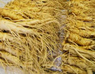 인삼시장 볼거리 - 풍기인삼축제