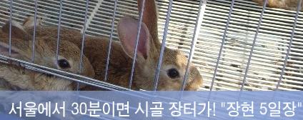 서울에서 30분이면 시골 장터가!