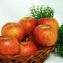 [과일명가] 맛있는 사과 대과 10kg(26~32과)