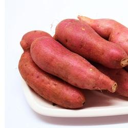 [우리농산] 17년 햇 고당도 세척 꿀고구마 5kg 특